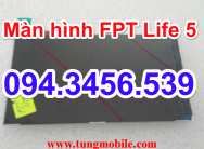 Màn hình FPT Life 5, lcd FPT Life 5, up rom FPT Life 5, up firmware FPT Life 5