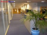Thảm trải sàn văn phòng TTVP001