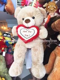 Teddy Ôm Tim Xám