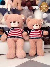 Teddy Áo Sao