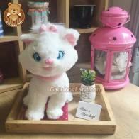 Mèo Bông Marie
