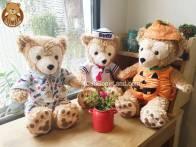 Gấu Bông Duffy