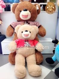 Teddy Áo Thú