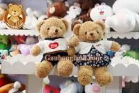 Teddy Hug Me