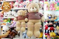Teddy Xoắn Kem