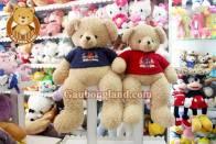 Gấu Áo Teddy