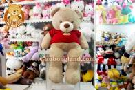 Teddy Áo Len Khỉ