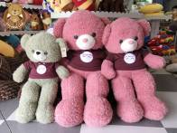 Gấu áo totoro