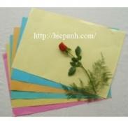 Bìa giấy đóng sổ A3 ngoại các mầu (100 tờ)