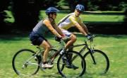 Hướng dẫn điều chỉnh yên xe phù hợp khi đi xe đạp