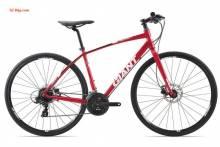 Xe đạp thể thao Giant Escape SL2