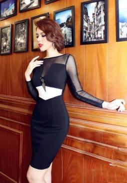 Đầm đen pha lưới tay dài thiết kế ôm body sang trọng #918