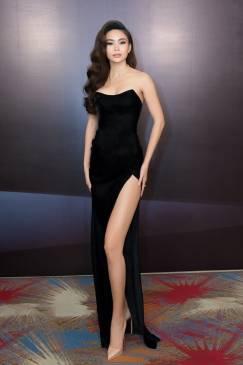 Đầm dài đen dạ hội thiết kế cúp ngực xẻ tà tuyệt đẹp #1647