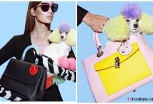 Bộ sưu tập túi xách Dior Thu Đông 2014