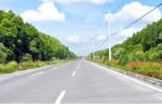 TP HCM chốt phương án xây cầu Cần Giờ
