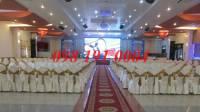 Màn hình LED tiệc cưới trong nhà 14m2