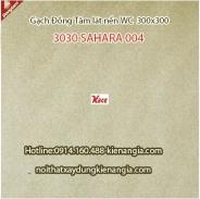GẠCH ỐP TƯỜNG ĐỒNG TÂM BỘ 3060SAHARA04-01