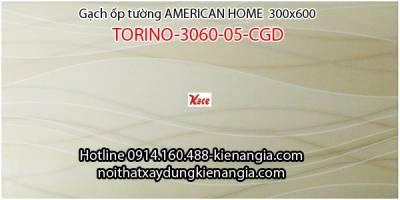 Gạch American ốp tường TORINO-3060-05-CGD