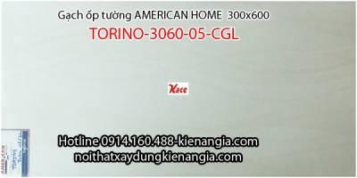 Gạch American ốp tường TORINO-3060-05-CGL