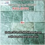 Gạch lát WC 300X300 KAG-30161