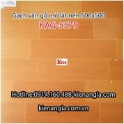 Gạch vân gỗ mờ lát nền 500x500 KAG-5579