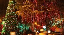 Chuyên cung cấp đèn led trang trí tại Hà Nội