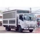 Xe ô tô tải ISUZU NQR75L 5,5 TẤN