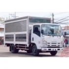 Xe-o-to-tai-ISUZU-NQR75L-55-TAN
