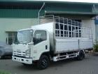 Xe tải 4,9 tấn isuzu NQR75L thùng bạt