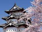 """Đại sứ quán Nhật Bản tại Việt Nam: Cảnh báo về những """"chiêu"""