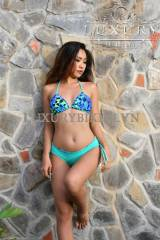 Reversible Brazilian Bikini