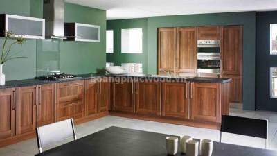 Mẫu kệ bếp, tủ bếp gỗ óc chó (walnut) WKC H05