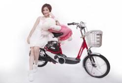 3 tiêu chí quan trọng bạn cần biết khi chọn xe đạp điện nhập khẩu nguyên chiếc