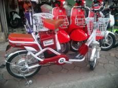 Xe đạp điện 2 yên
