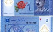"""Tiền Malaysia và quốc hoa """" dâm bụt"""""""