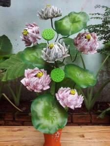 Cây hoa sen 5 bông