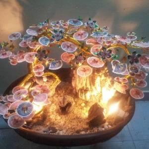 Cây tiền dáng bonsai đèn - thác nước