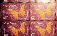 4 con tem Bướm Việt Nam 1998