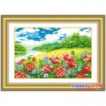 Cánh Đồng hoa Poppy JH128