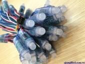 LED-Full-4-DAY-9803