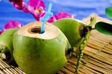 Những lợi ích của trái dừa mang lại