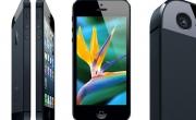 Sửa lỗi Màn hình iphone 5 bị rung liên tục
