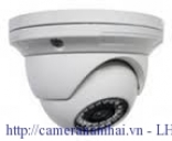 Camera EasyN IP-NH-1100