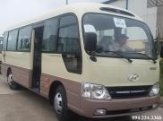 Hyundai County Đồng Vàng ghế 3-1