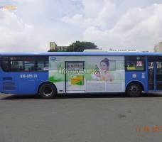 Quảng cáo Enat 400 trên xe buýt Hà Nội & HCM