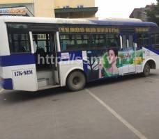 Mega We Care quảng cáo trên xe bus Thái Bình