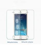 Miếng dán cường lực iPhone 5 bo cạnh