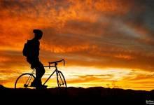 TIPS HAY MỖI NGÀY: Chụp ảnh ngược sáng