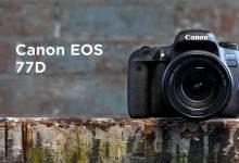 Canon 77D - Thoải mái sáng tạo