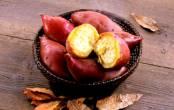 Những điều cần chú ý khi ăn khoai lang vào mùa đông giúp ngừa ung thư